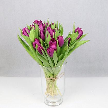 Tulipany klasyczne Fioletowe