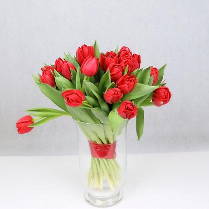 Tulipany Pełne Czerwone