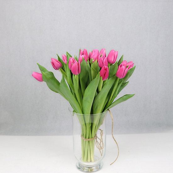 Tulipany klasyczne Różowe