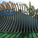 tortuga wave (2) (Small).jpg