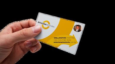 visita Wellington.png