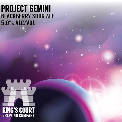 Project Gemini - Blackberry Sour - 5% (4Pack / 16oz cans)