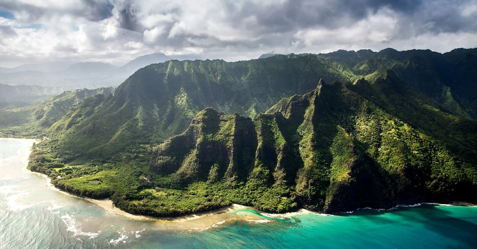 Hawaiian Ukulele Company Background Phot