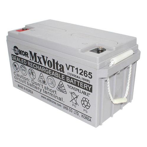 12V/65Ah VRLA Battery (350L X 166W X 175H mm Lead Terminal M6)
