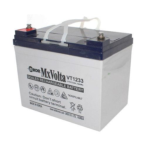 12V/33Ah VRLA Battery (196L X 131W X 163H mm F3 Flange Terminal)
