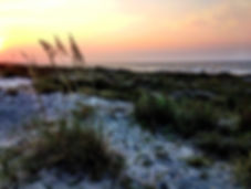 Kiawah_Island.jpg