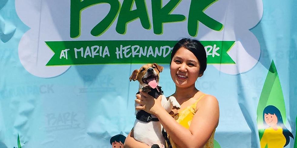 Bark at Maria Hernandez Park 2019