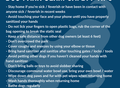 COVID-19 Park Safety Tips