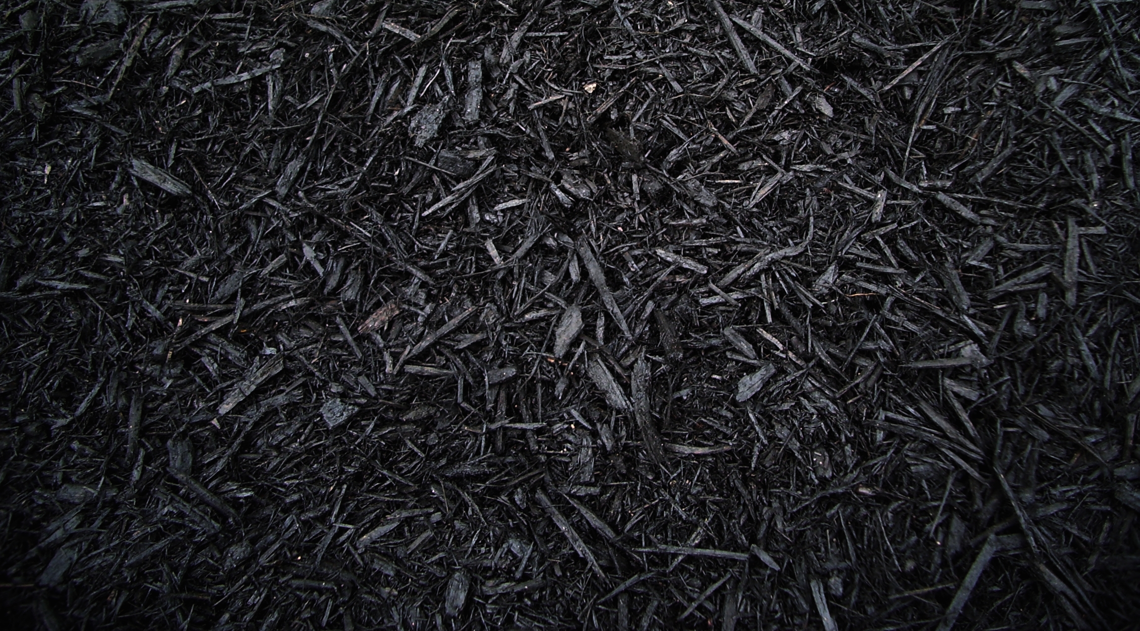Black Mulch Colored