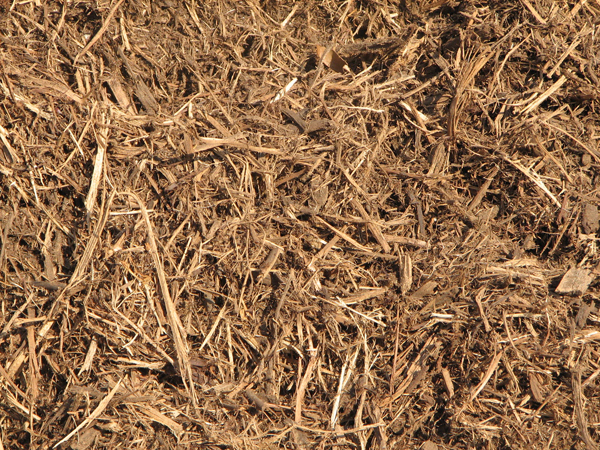 Double Ground Cedar Mulch
