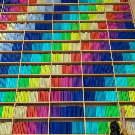 Een boekenkast vol regenbogen