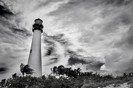 lighthouse-palm-trees-key-west-florida.p