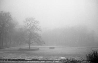 old twon park 2.jpg