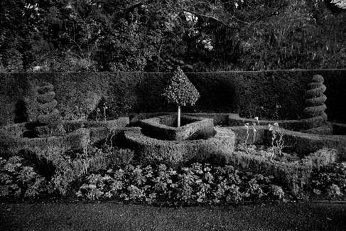 garden_1_1.jpg