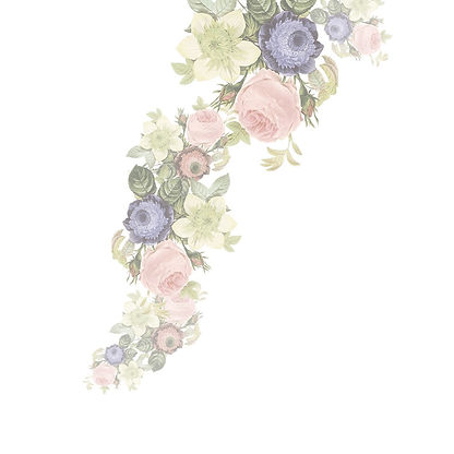 Wedding floral illustration, botanical theme