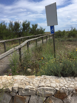 Zugangspfade über die Düne
