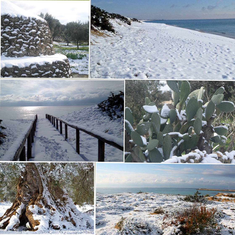 Ausnahme - Winter 2016