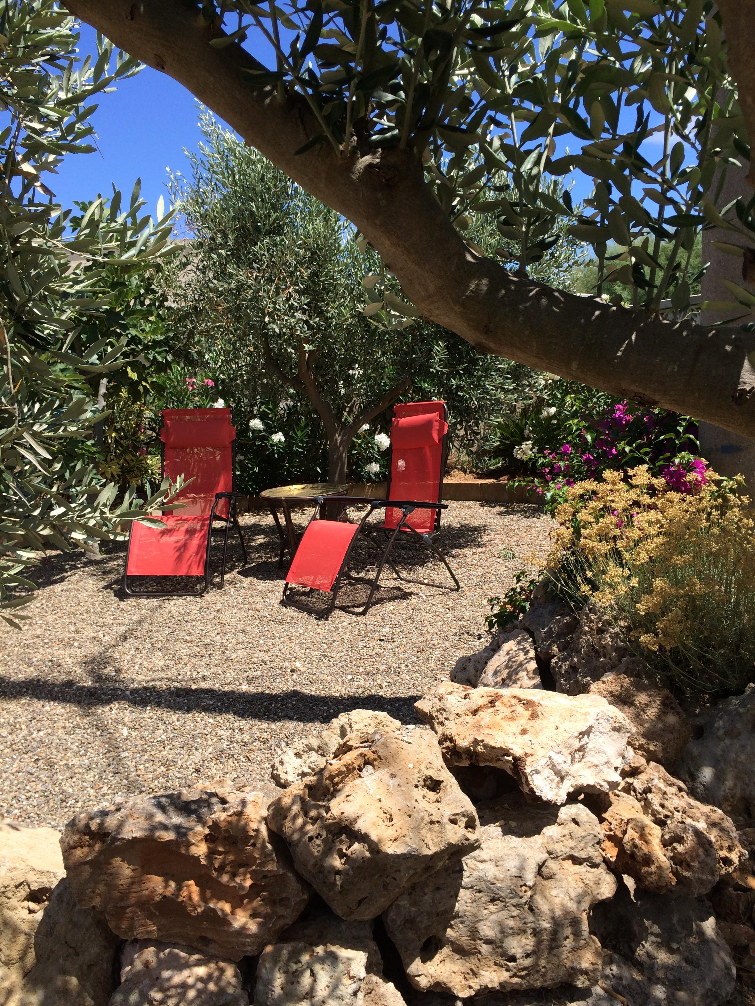 Unter Feigen- und Olivenbäumen