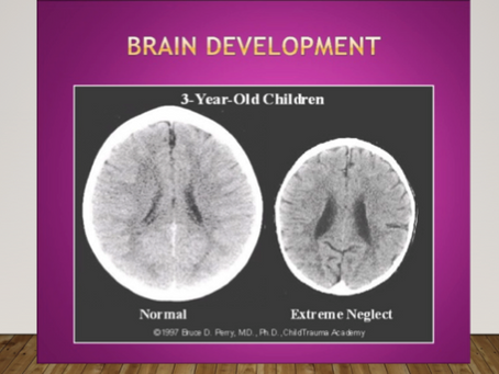 Promoting Strong Neuroplasticity and Grit in Early Childhood