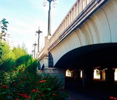 Puentes de Valencia que enamoran | Valencia Enamora