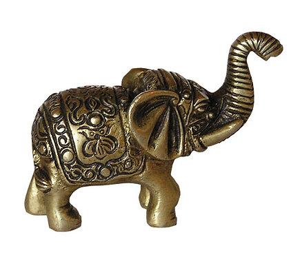 Babyelefant mit Gravur