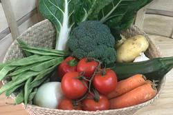 El ciclo beneficioso de la fruta y verdura ecológica