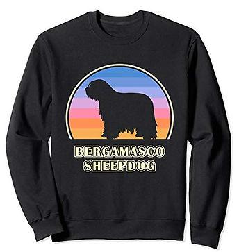 Vintage-Sunset-Sweatshirt-Bergamasco-She