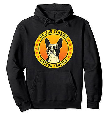 Boston-Terrier-Portrait-Yellow-Hoodie.jp