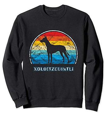 Vintage-Design-Sweatshirt-Xoloitzcuintli
