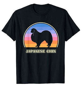 Vintage-Sunset-tshirt-Japanese-Chin.jpg