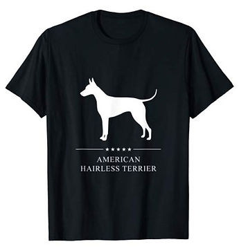 American-Hairless-Terrier-White-Stars-ts