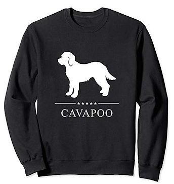 White-Stars-Sweatshirt-Cavapoo.jpg