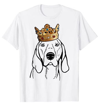 American-English-Coonhound-Crown-Portrai