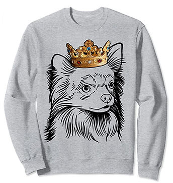 Chihuahua-Longhaired-Crown-Portrait-Swea
