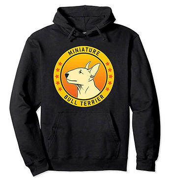 Miniature-Bull-Terrier-Portrait-Yellow-H