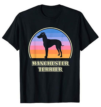 Vintage-Sunset-tshirt-Manchester-Terrier
