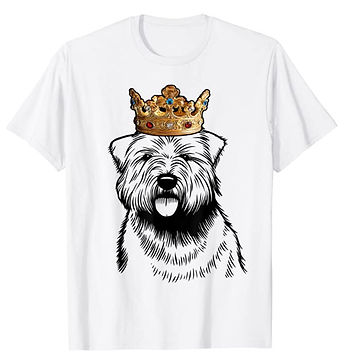 Glen-of-Imaal-Terrier-Crown-Portrait-tsh