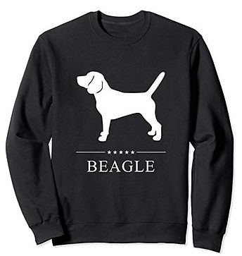 White-Stars-Sweatshirt-Beagle.jpg