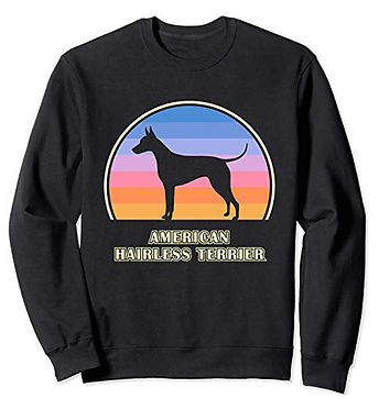 Vintage-Sunset-Sweatshirt-American-Hairl