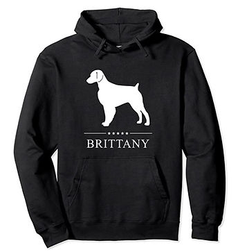 Brittany-White-Stars-Hoodie.jpg