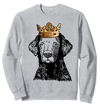 Curly-Coated-Retriever-Crown-Portrait-Sw