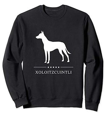 White-Stars-Sweatshirt-Xoloitzcuintli.jp