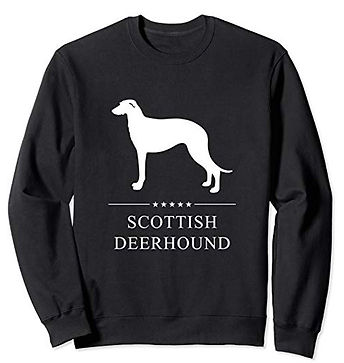 White-Stars-Sweatshirt-Scottish-Deerhoun