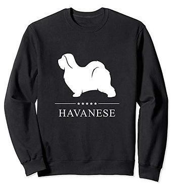 White-Stars-Sweatshirt-Havanese.jpg