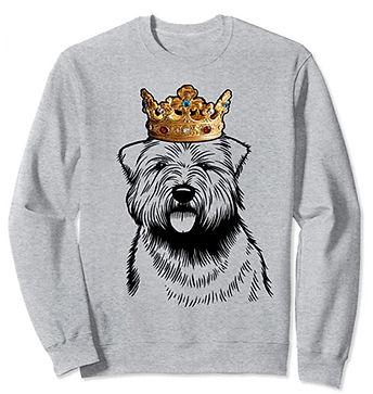 Glen-of-Imaal-Terrier-Crown-Portrait-Swe