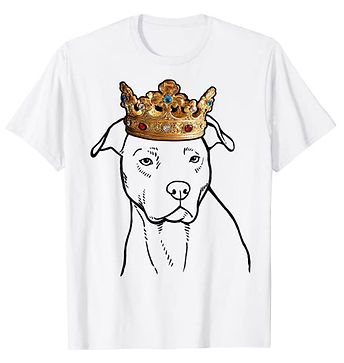 American-Pit-Bull-Terrier-Crown-Portrait
