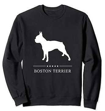 White-Stars-Sweatshirt-Boston-Terrier.jp