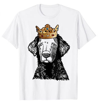 Curly-Coated-Retriever-Crown-Portrait-ts