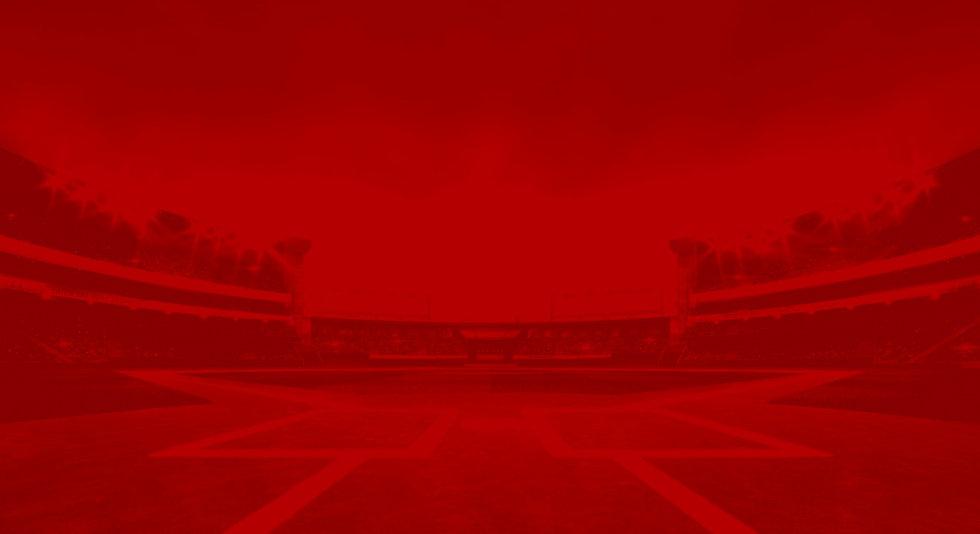 baseball back_edited_edited.jpg