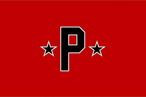 Red Pioneers Flag